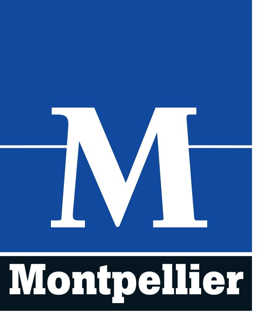 2dd76f9ff90 Offre d emploi VILLE DE MONTPELLIER - Emploipublic