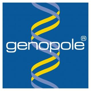 GIP GENOPOLE